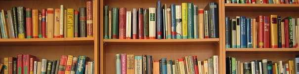 Leggere più libri alla volta