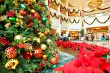 Hong Kong Disneyland Christmas Celebration Woos Singapore