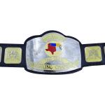 NWA Mid South Tag Team Wrestling Championship