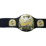 UFC World Super Fight Championship Wrestling Belt