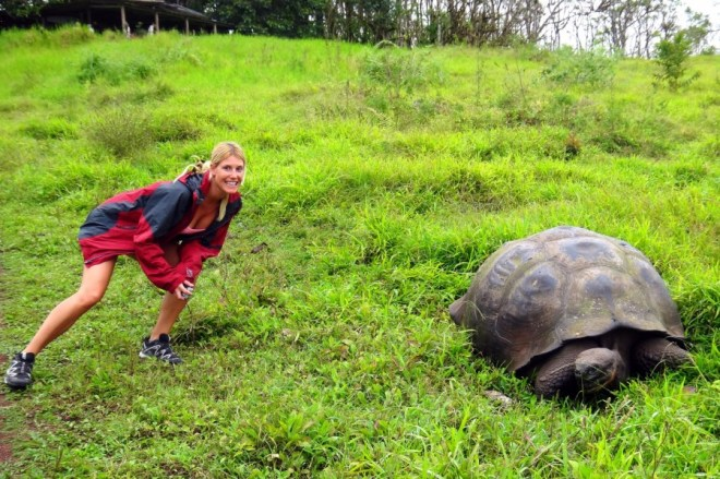 Autumn with a Galapagos Tortoise