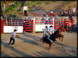 mexican rodeo photo