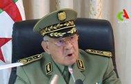 الجزائر .. رئيس أركان الجيش الجزائري يجدد دعمه للرئيس الانتقالي
