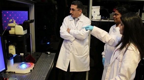 باحثون بجامعة نيويورك يطورون تقنية جديدة لحفظ الخلايا البشرية