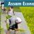 Human Development Report of Assam