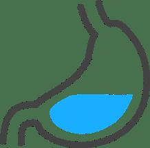 stomach graphics