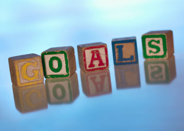 set business income goals