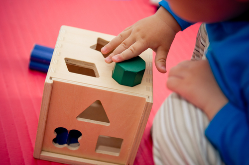 Wood puzzles and educational toys