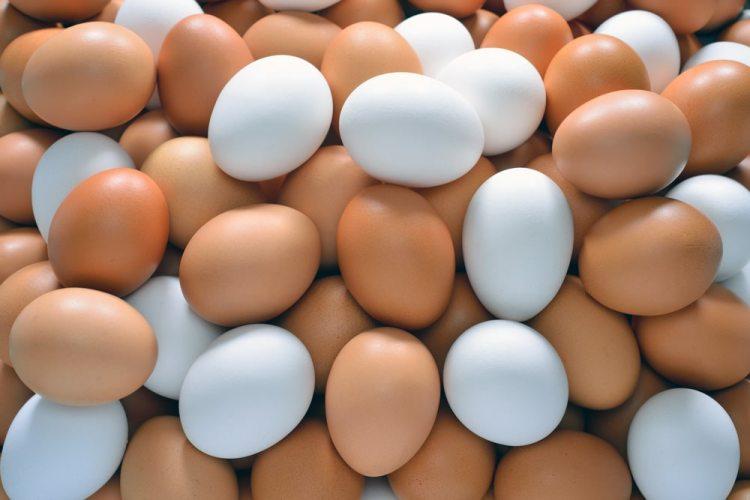 eieractie, eieren