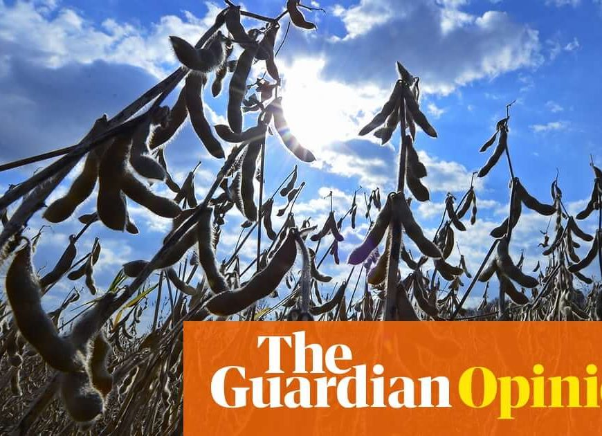 The best way to save the planet? Drop meat and dairy | George Monbiot
