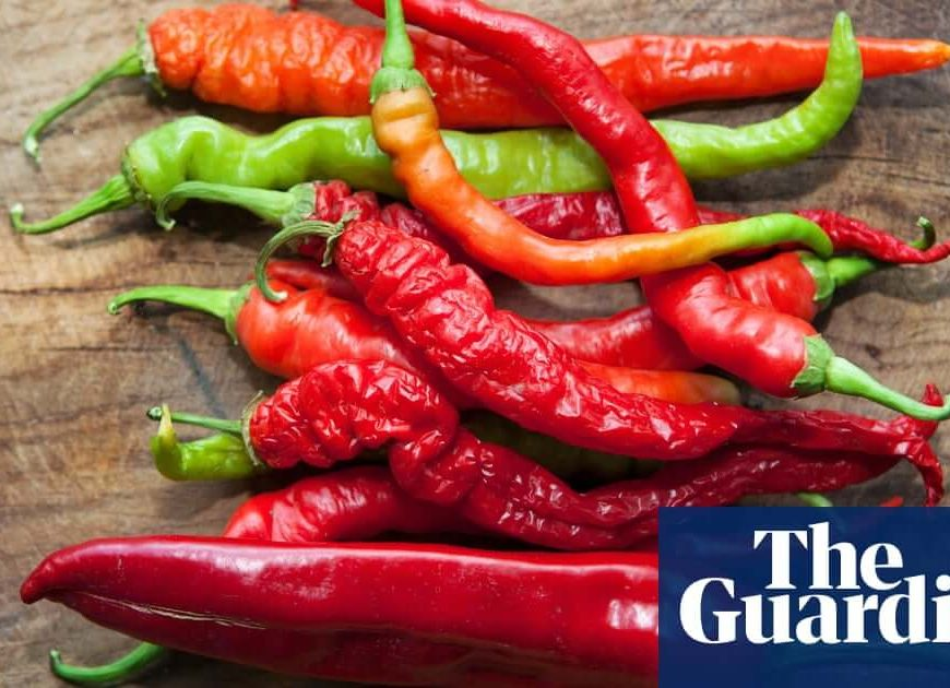 What can I use instead of chillies? | Kitchen Aide