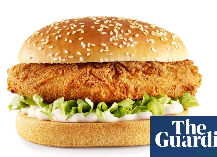 KFC to hold US trial of vegan chicken nuggets
