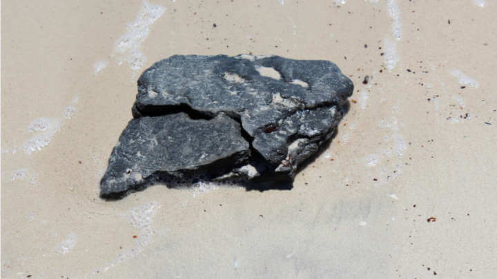 International Team Confirms Where Those Waxy Substances Washed Up On Beaches Come From