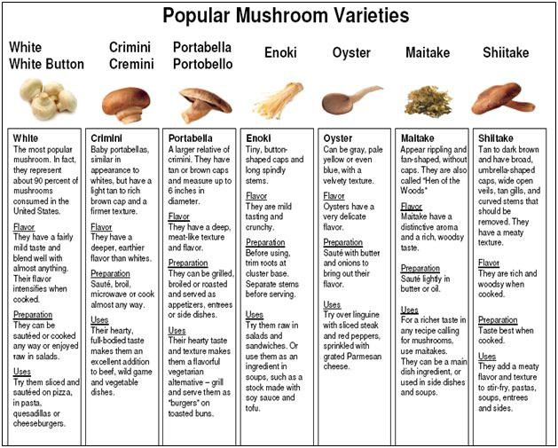 Report On Marketing Aspects Of Mushrooms Assignment Point