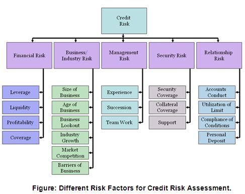 Credit Risk Management System City Bank Limited