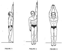 Article on How to Grow Taller Through Exercise