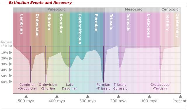 Extinction Event Assignment Point