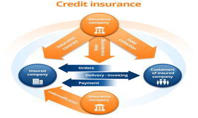 Trade Credit Insurance Assignment Point