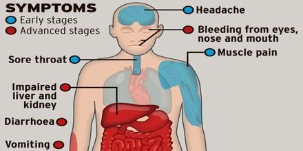 Viral Hemorrhagic Fever - Assignment Point