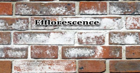 Efflorescence  Assignment Point