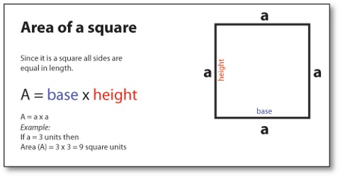 How To Find The Area Of A Square? Assignment Point