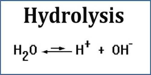 Hydrolysis Assignment Point