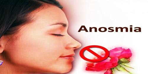 Anosmia  Assignment Point
