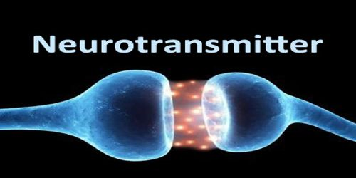 About Neurotransmitter Assignment Point