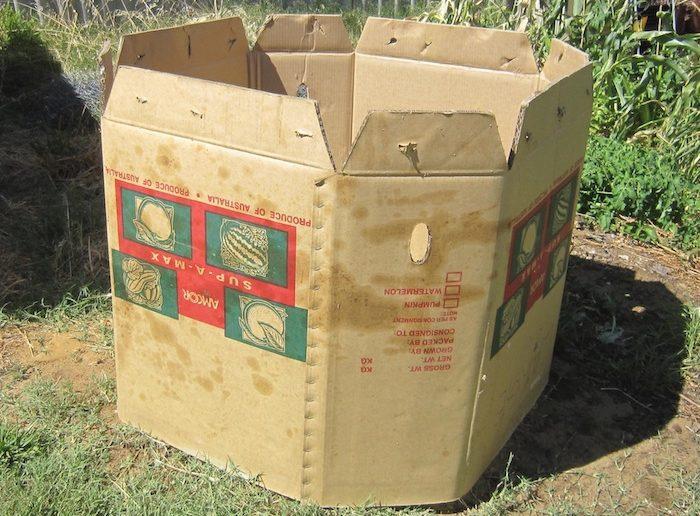 caixa grande de papelão aberta