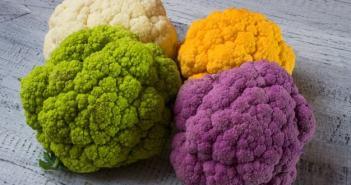 couve flor colorida