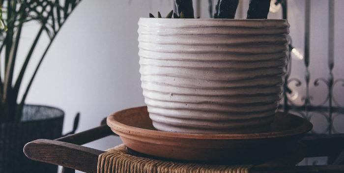 vaso de planta com prato