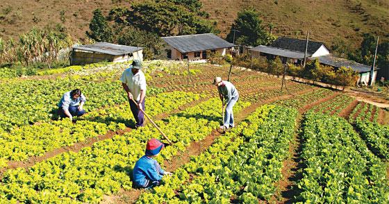 Resultado de imagem para meio ambiente area agricultura