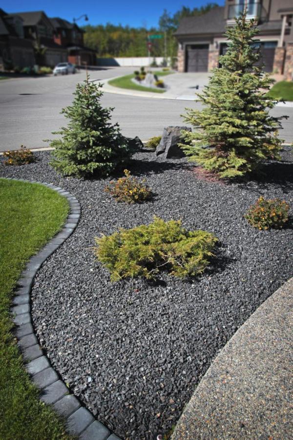 plants & vegetation calgary - landscaping