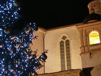 Natale ad Assisi il Presepe e Albero da zone tempesta Vaia