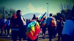 marcia-della-pace-perugia-assisi-2014 (42)