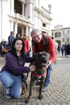 @Domenico Vallorini