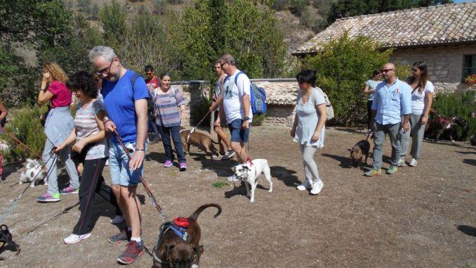 In cammino a 6 zampe passeggiata al Bosco di San Francesco