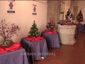 Natale, Alberi d'Autore ad Assisi fino all'11 dicembre esposti nella sala Ex Pinacoteca