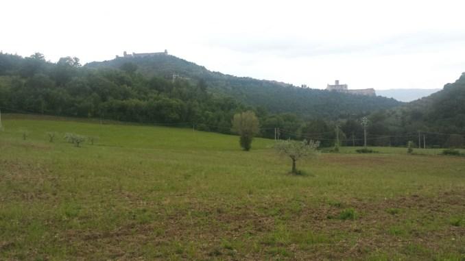 Paolo Ansideri, Assisi nel tempo presente, autonomia di cultura da religione e turismo