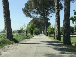 Lavori ad ottobre su oltre 13 chilometri di strade comunali