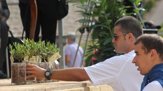 Preghiera ecumenica per il Creato, da Assisi un messaggio ai leader politici di Cop24