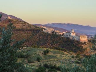 La natura selvatica dell'amore al Bosco di San Francesco