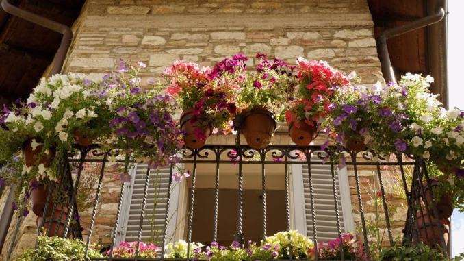 Concorsi infiorate e balconi fioriti, ultimi giorni per presentare le domande