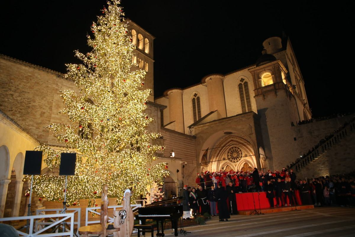 Acceso l'albero di Natale in piazza san Francesco ad Assisi | Video e foto