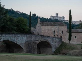 """Sabato 7 agosto """"Astronomi per una notte"""" al Bosco di San Francesco. Secondo appuntamento previsto per sabato 14 agosto"""