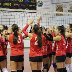 BDG Assisi Volley – Spello Volley (U14) – (G4421)