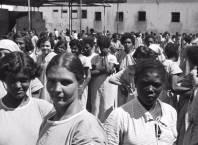Imagem: Holocausto Brasileiro/Reprodução