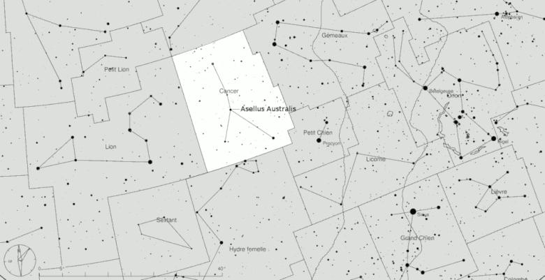 Asellus Australis