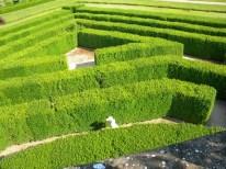 Jeux dans le labyrinthe du Chateau de Cormatin