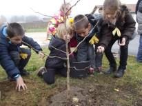 cecl-2014-plantatin-arbre-laicite-dden-0008